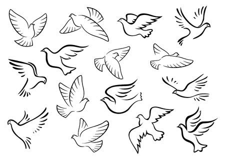palomas volando: Pájaros paloma y paloma siluetas en el estilo de dibujo de la paz o el concepto de amor diseño