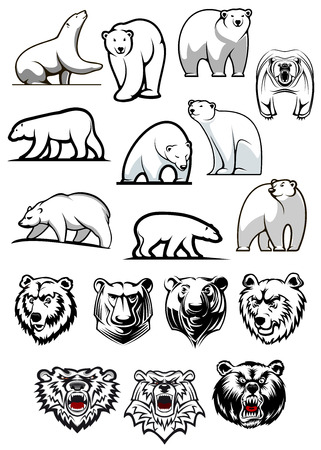 bears: White polar bear cartoon characters showing various positions of full body and heads for tattoo or sport team mascots design