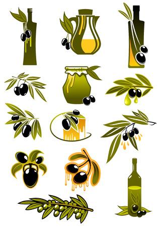 Olive oil design elements showing green leafy branches with ripe black olives fruits and olive oil bottles and pitcher suited for healthy nutrition design Ilustração