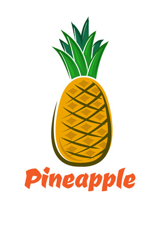 tough: Bright yellow pineapple fruit with green tough waxy leaves in cartoon style for healthy nutrition or diet dessert design Illustration
