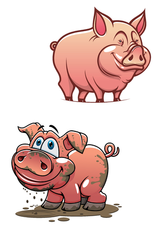 pig tails: Pleased cartoon dirty piggy standing in a puddle and shining clean pink pig characters with smiling faces for agriculture or comics design