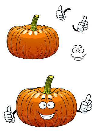 ribbed: Orange cartoon funny pumpkin vegetable character with a ribbed steep sides for healthy nutrition or vegetarian design
