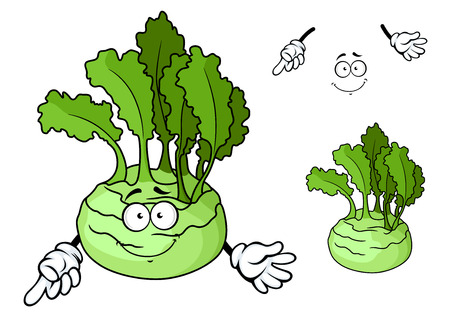 crisp: Smiling ripe kohlrabi cabbage vegetable cartoon character with crisp and juicy stem and bright green leaves for natural food or agriculture design