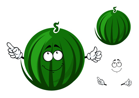 Cute ripe striped green watermelon fruit cartoon character with short curly stalk and funny face