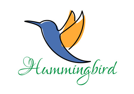 hummingbird: Abstract flying hummingbird doodle sketch in flowing lines of blue and orange colors with caption below Hummingbird Illustration