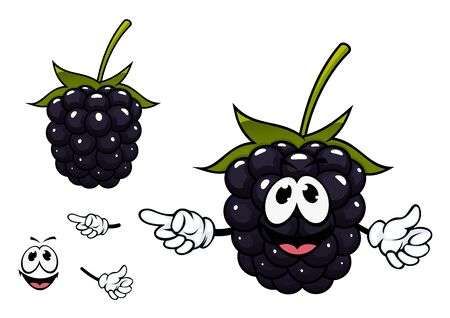 blackberries: Ripe succulent blackberry fruit cartoon character with black shining drupelets, big green carpel and funny smiling face for natural food or childish menu design Illustration