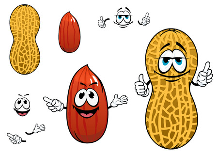 peanut: Funny cartoon peanuts characters with dried kernel in brown seed coat and whole legume fruit in yellow pod