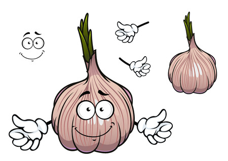 thin bulb: Bulb of cartoon garlic vegetable character enclosed in thin glossy papery sheath with green spicy sprouts on the top for healthy nutrition concept design Illustration