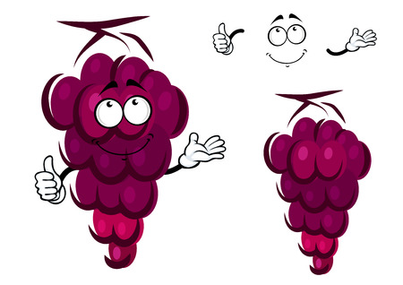purple grapes: Bunch of fresh ripe purple grapes with a happy face and waving arms with a second plain variant with no face and separate elements