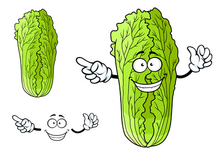 Cartoon healthy green leafy chinese cabbage character with cute happy face and little hands on a white ackground
