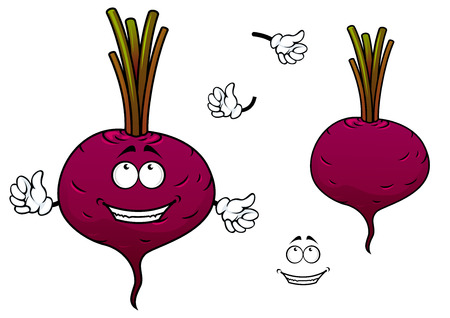 beet root: Happy cartoon beetroot vegetable character with hands and funny smiling face isolated on white Illustration