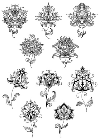 white lace: Vintage floral paisley elements and blossoms in persian or indian outline style