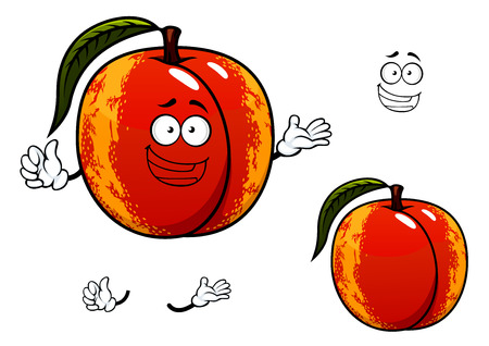 Funny ripe nectarine fruit cartoon character with smooth red yellow skin and leaf isolated on white background