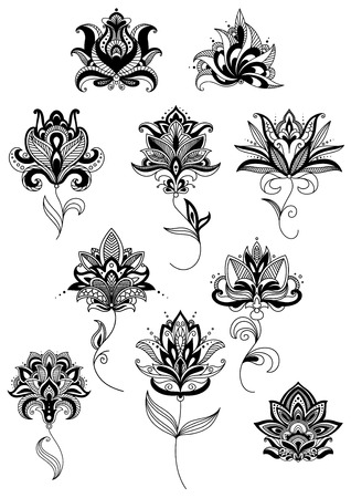 blooms: Outline paisley black flowers on twining stems with lush blooms in traditional persian style Illustration