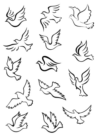 Outline graceful dove and pigeon birds set in sketch style for peace, religion or freedom concept design