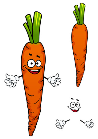 vegetarian food: Colorful orange cartoon carrot vegetable character with a smiling face and hands for healthy food or cooking design