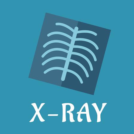 Panorámica Imágenes De Rayos X Dental Con Los Dientes Para La ...