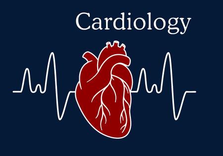 electrocardiograma: Corazón humano rojo con la frecuencia de la onda para el diseño y el concepto médico de cardiología