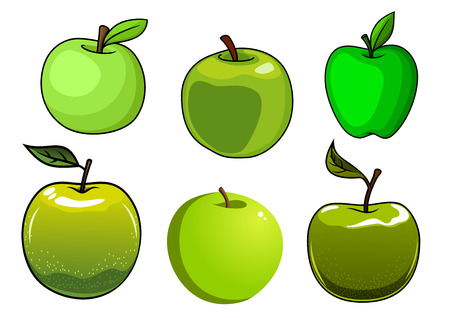 apfelbaum: Frische gr�ne �pfel Fr�chte getrennt auf wei�em Hintergrund f�r frische Lebensmittel-Design Illustration