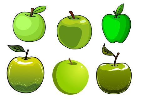 albero di mele: Mele verdi freschi, frutta isolato su sfondo bianco per la progettazione di alimenti freschi