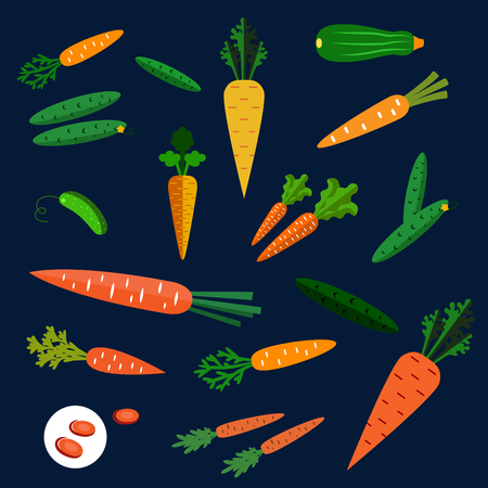 carotene: Healthy colorful flat carrot and cucumber vegetables scattered on a dark background Illustration