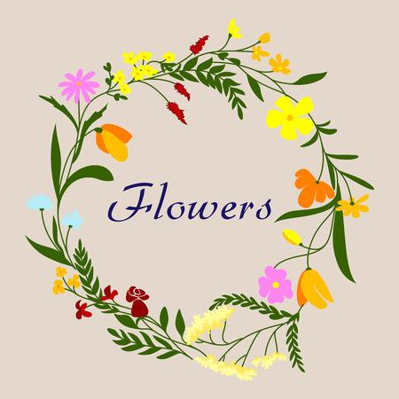 champ de fleurs: Cadre de la fronti�re de couronne de fleurs avec ressort floraison des herbes, des fleurs color�es sur le terrain et de diverses feuilles