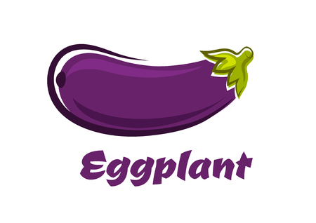 unpeeled: Ripe fresh eggplant or aubergine vegetable in cartoon style with dark violet smooth skin and sappy star shaped leafy calyx