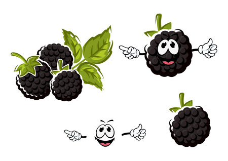 stalks: Ripe juicy cartoon blackberries fruits characters with funny berries, big lush green stalks and carved leaves isolated on white background, for agriculture or healthy nutrition concept design Illustration