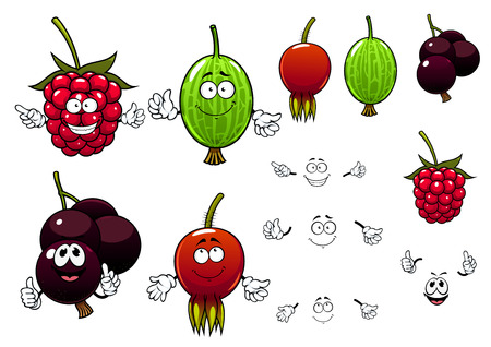 currants: Fresh raspberry, black currants, gooseberry and briar berries cartoon characters with smaller plain duplicates for agriculture or healthy food