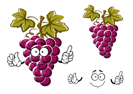 cartoon berries: Ripe purple grape fruit cartoon character with round juicy berries, curly tendril and dark green leaves for fresh food or agriculture design Illustration