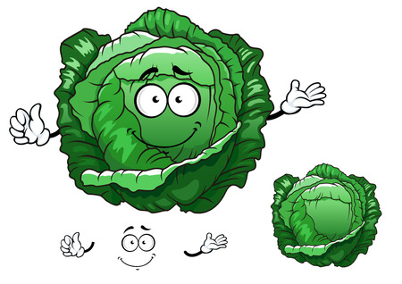 sappy: Crunchy fresh cabbage vegetable cartoon character with sappy bright green leaves, for vegetarian food or agriculture design