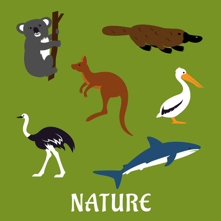 platypus: Australian native animals and birds icons in flat style with platypus, emu, kangaroo, koala, pelican and white shark with caption Nature Illustration