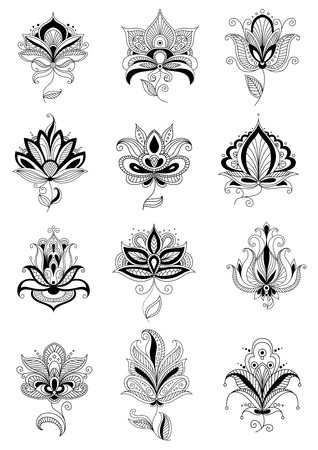 persian: Elegant persian flowers with lacy twisted teardrop petals, adorned curly paisley ornaments isolated on white