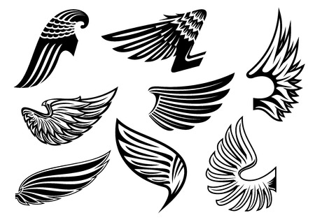 wings angel: Heraldic black and white angel or evil wings with different shapes and plumage