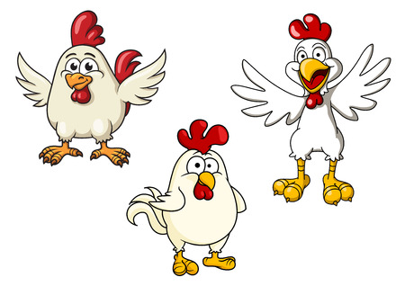 Cartoon white roosters or cocks with red crests and flapping wings, for farm animal or comics design