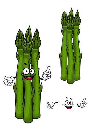 stout: Funny cartoon farm asparagus vegetable character with sappy stout green stems and feathery foliage, for agriculture or vegetarian food design