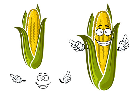 corn: Sweet corn or maize vegetable cartoon character isolated on white for agriculture or food design