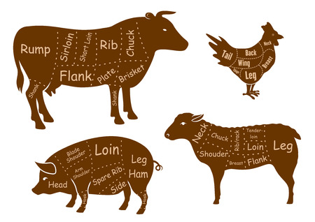 Beef, pork, chicken and lamb meat cuts diagram with brown silhouettes of farm animals with marked parts and cutting lines isolated on white background, for butcher shop or food design Stock Illustratie