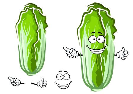 repollo: Personaje de dibujos animados de verduras frescas de col china con hojas verdes arrugadas, la cara alegre sonriente y señalando gesto de la mano Vectores