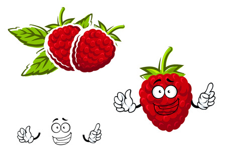 sepals: Red raspberry fruit character  in cartoon style with lush green sepals on the top and joyful smile, suitable for agriculture or natural food Illustration