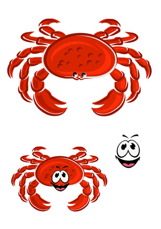 armoured: Funny red crab cartoon character with thick armoured shell, claws and smiling face for mascot or seafood design