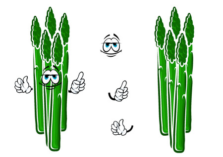 sappy: Fresh cartoon asparagus vegetable spears character with sappy green stems and funny face, for agriculture or healthy food design Illustration