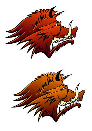 aggressive: Wild boar head with aggressive sharp tusks, for sporting mascot, hunting or tattoo design Illustration