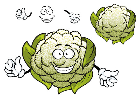 cheerful cartoon: Cheerful organic cauliflower vegetable cartoon character with curved green foliage and knobbly inflorescences isolated on white, for vegetarioan food or agriculture design Illustration