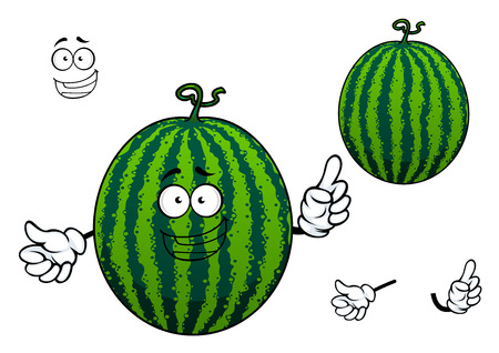 toothy smile: Sweet green striped cartoon watermelon fruit character with smooth thick skin and toothy smile, isolated on white background