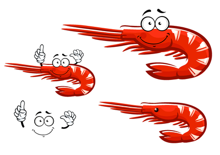 antennae: Small red shrimp cartoon character with long antennae and curved tail showing upward, isolated on white, for seafood menu design