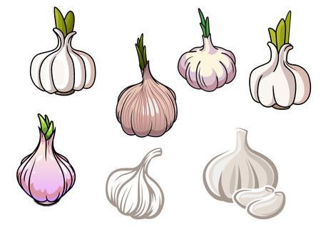 ajos: Conjunto de blancos y grises verduras ajo aislados sobre fondo blanco