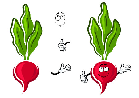 sappy: Pink radish vegetable cartoon character with round root, shy smile and long green leaves with stems. For agriculture or healthy food design