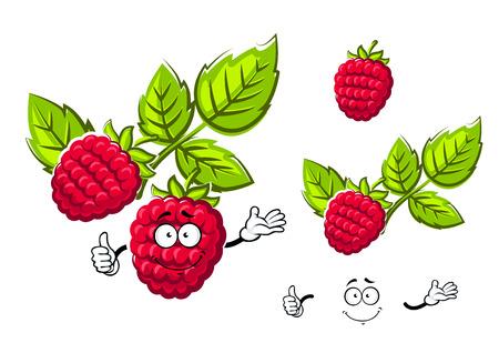 buisson: Ripe fruit rouge framboise avec et sans facr, isolé sur fond blanc