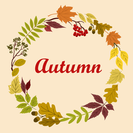 autumnal: Decorative autumnal frame design with autumn leaves and branches of oak, with acorns and bunch of viburnum Illustration